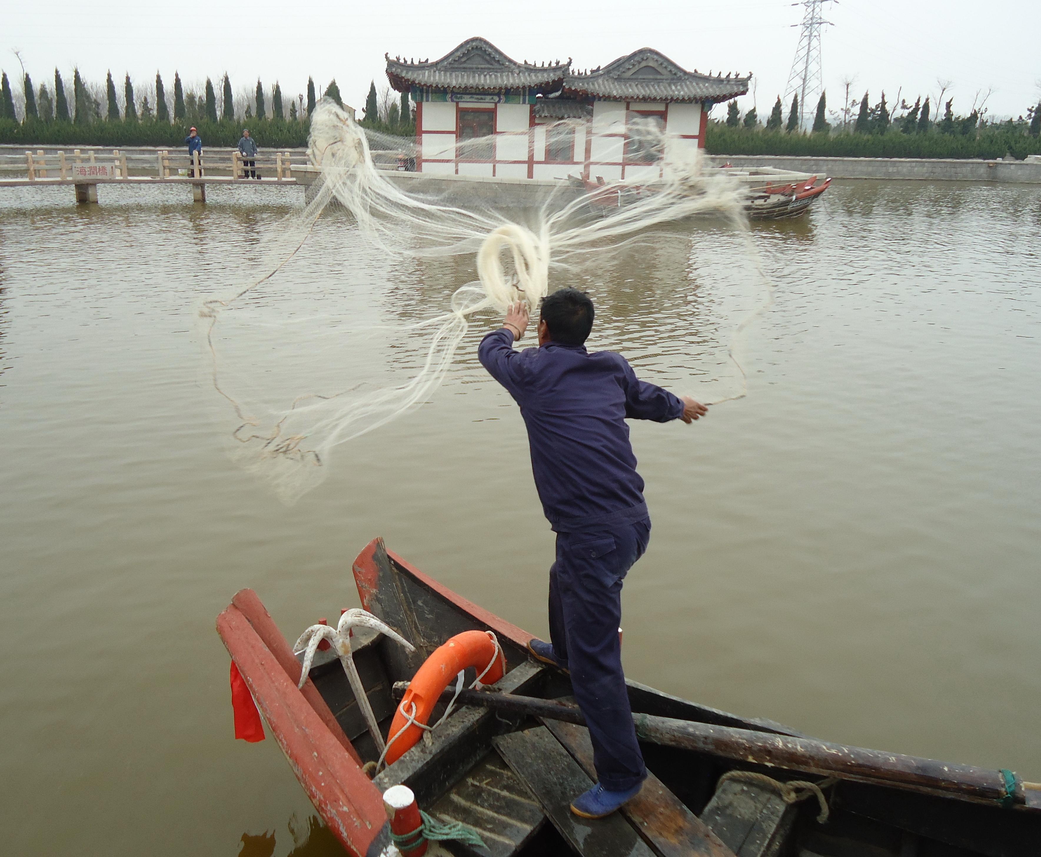 青岛市乡村文明行动摄影大赛--在青岛上半岛网